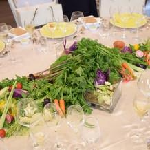 お花の代わりの野菜!