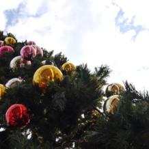 披露宴会場テラスのクリスマスツリー