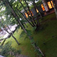 部屋から撮った中庭の雰囲気