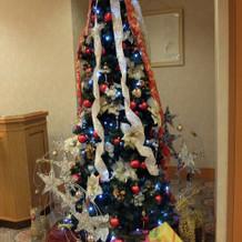 クリスマス時期だったのでツリーが