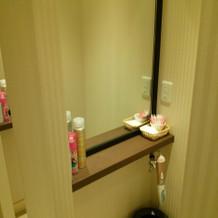 トイレ内パウダールーム