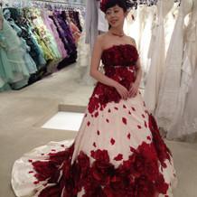 ドレスが沢山!