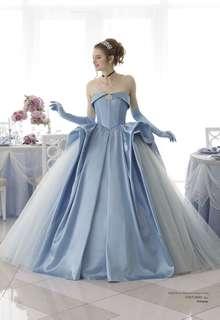 DWS0005 blue