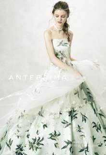 ANTEPRIMA New  Collection