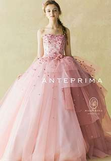 ANT0076 pink
