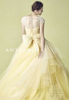 ANT0167 yellow