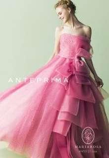 ANT0121 rose
