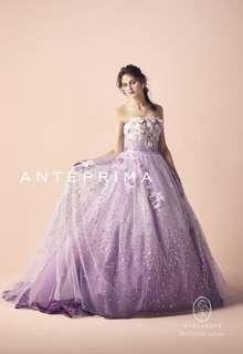 ANT0206 purple