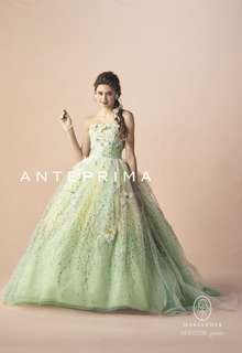 ANT0206 green