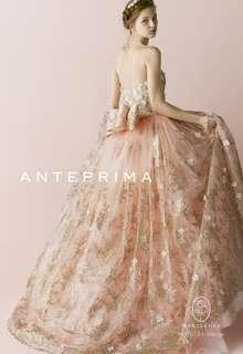 ANT0151