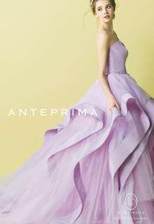 ANT0134 Lavender