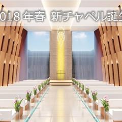 2018年春に新チャペルが誕生!天井高7mの開放的なチャペルは、白と木のナチュラルな色目が特徴。