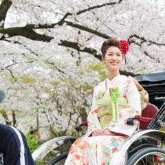 桜満開のなか花嫁道中