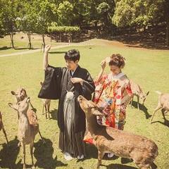 前撮り・後撮りロケーション撮影♪奈良ではの鹿と一緒に撮影♪