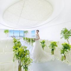 新たな家族が生まれる場所であるチャペルは、純白の繭をイメージ。