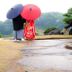 ロケーション 和装 番傘 色打掛 黒紋付袴