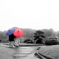 ロケーション 紅葉 和装 色打掛 黒紋付袴 モノクロ