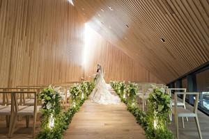 森の光教会
