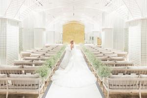 祝福の光、輝く Notre Dame Church