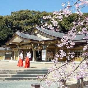 和の魅力溢れる神社挙式プラン¥378,000