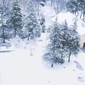 冬限定!ウィンタープラン 【10名¥530,000】