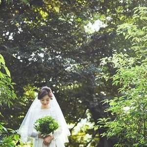 【先着10組】大人気のSpring結婚式の先行予約プラン