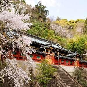 静岡浅間神社挙式プラン