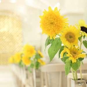 暑い夏も快適に★7・8月SUMMER WEDDING PLAN