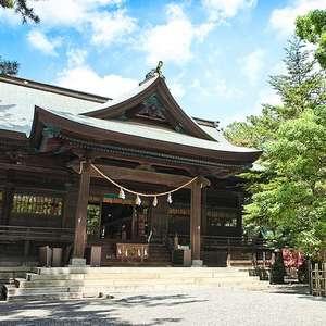浜松八幡宮 神前結婚式プラン「楠・くすのき」