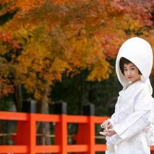 【家康が愛した葵の紋】上賀茂神社限定の御神紋入り和装プラン