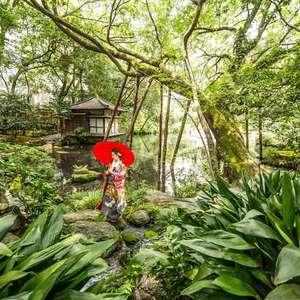 庭園和装挙式【秋挙式がお得】スタンダードプラン
