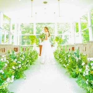 【写真だけの結婚式】写真とドレスがついたフォトプラン!!