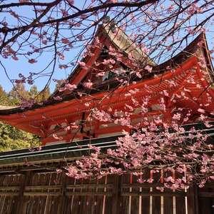 ◆日本古来の伝統美と格式あふれる結婚式を◆ 神社挙式プラン
