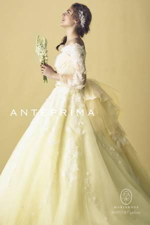 37枚目 ANT0187 yellow