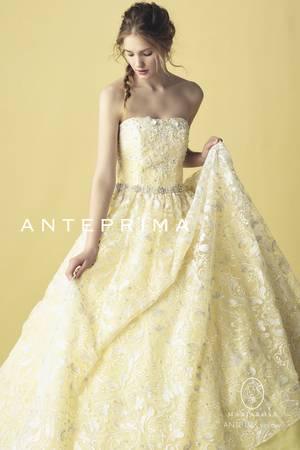 4枚目 ANT0197 yellow