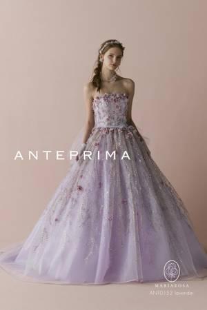 2枚目 ANT0152 lavender