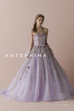 第3位 ANT0152 lavender