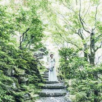 自然を余すことなく取り入れた日本らしい繊細な緑美