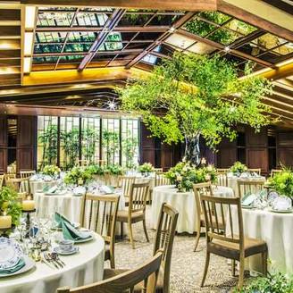 木の温もりや輝く緑に包まれながら、重厚感のある落ち着いた空間で優雅なお時間を