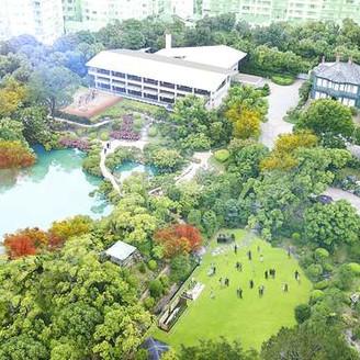 100年の歴史が育てた相楽園の緑を堪能
