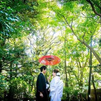 ハクサン自慢の日本庭園