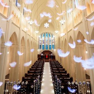 ブルーのステンドグラス越しに差し込む光がホワイトの空間に反射し、ドレス姿の花嫁の美しさを際立たせる