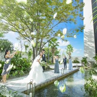 青空の下でのガーデンセレモニーで花びらが舞うフラワーシャワー