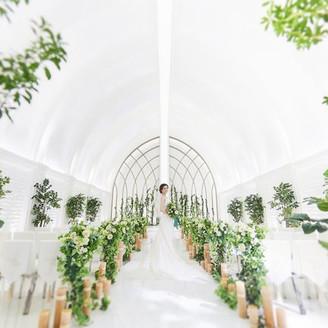 挙式にふさわしい純白の空間。花嫁を美しく輝かせる光のチャペルで感動のセレモニーを
