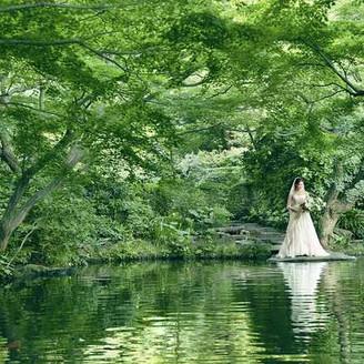 都会の喧騒を忘れさせる日本庭園