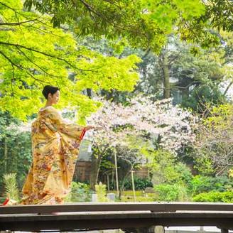 桜の舞う庭園で、ロケーションフォト