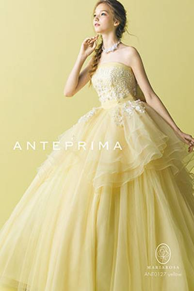 4枚目 ANT0127 yellow