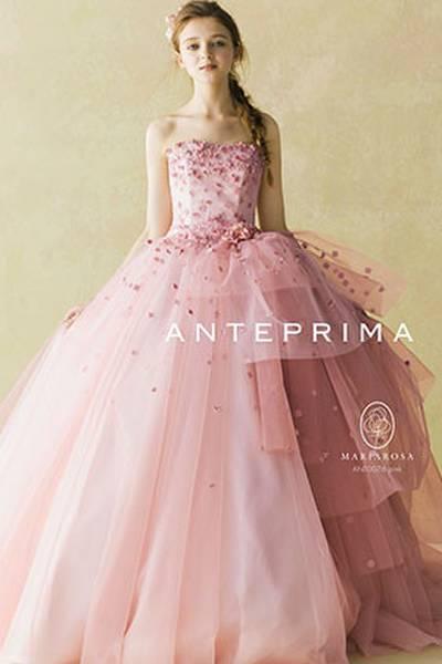 人気ランキング 第9位 ANT0076 pink