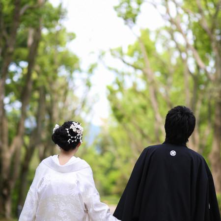 バックショット 白無垢 黒紋付袴 緑