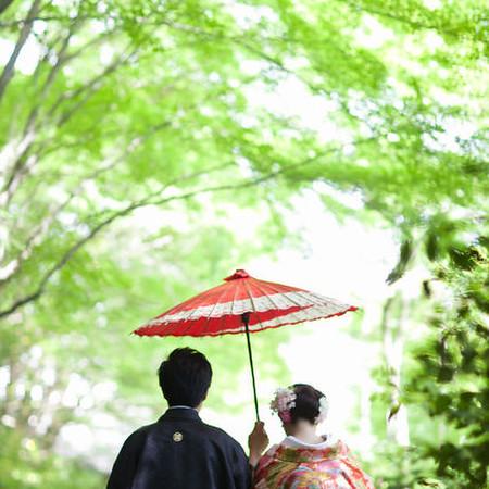 番傘 黒紋付袴 色打掛け 緑